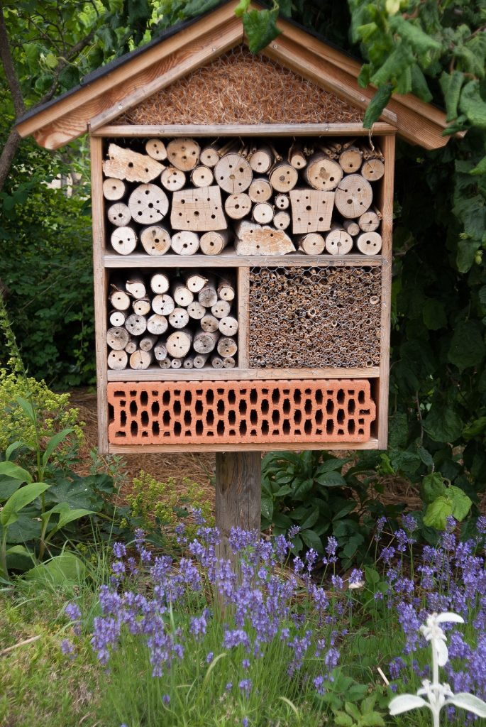 Protégez les insectes du jardin avec un hôtel rien que pour eux