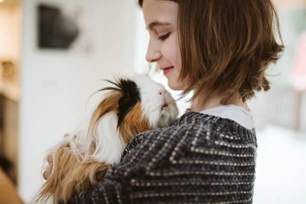 Fille qui tient un lapin dans ses bras