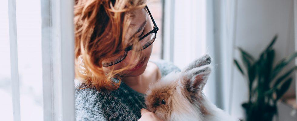 Une femme portant dans ses bras un lapin de compagnie tête de lion