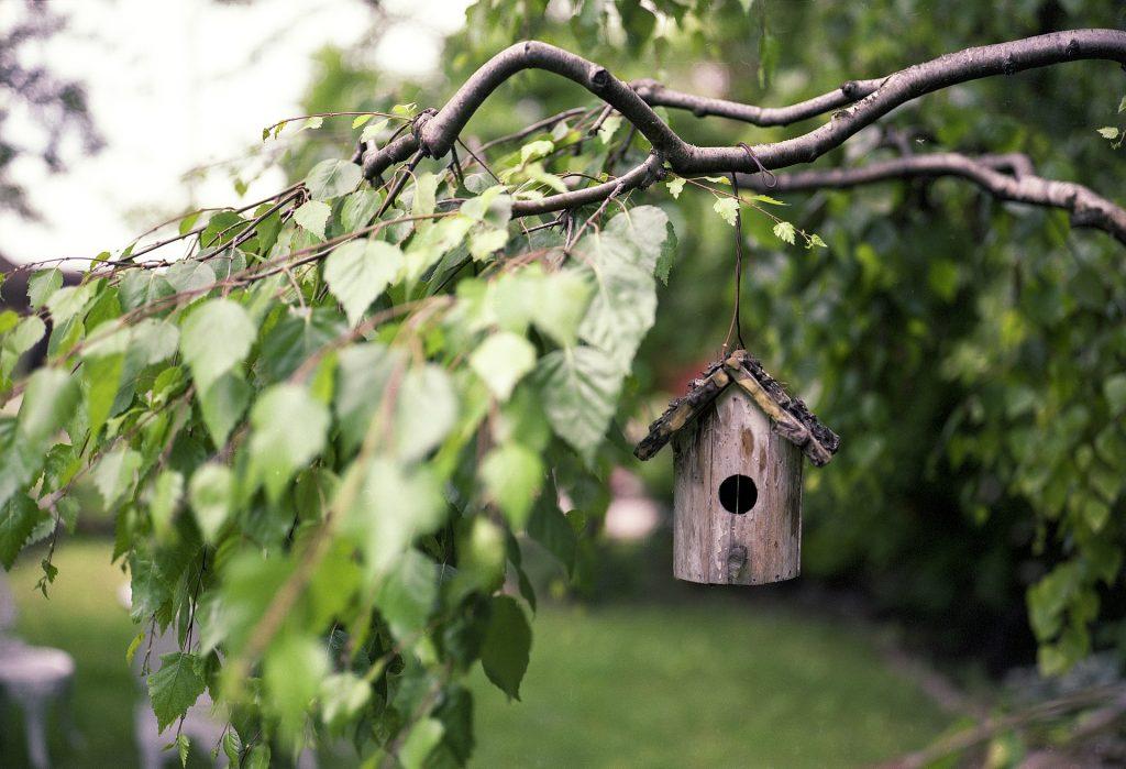 Une cabane ou une mangeoire à oiseaux est toujours bienvenue dans un jardin